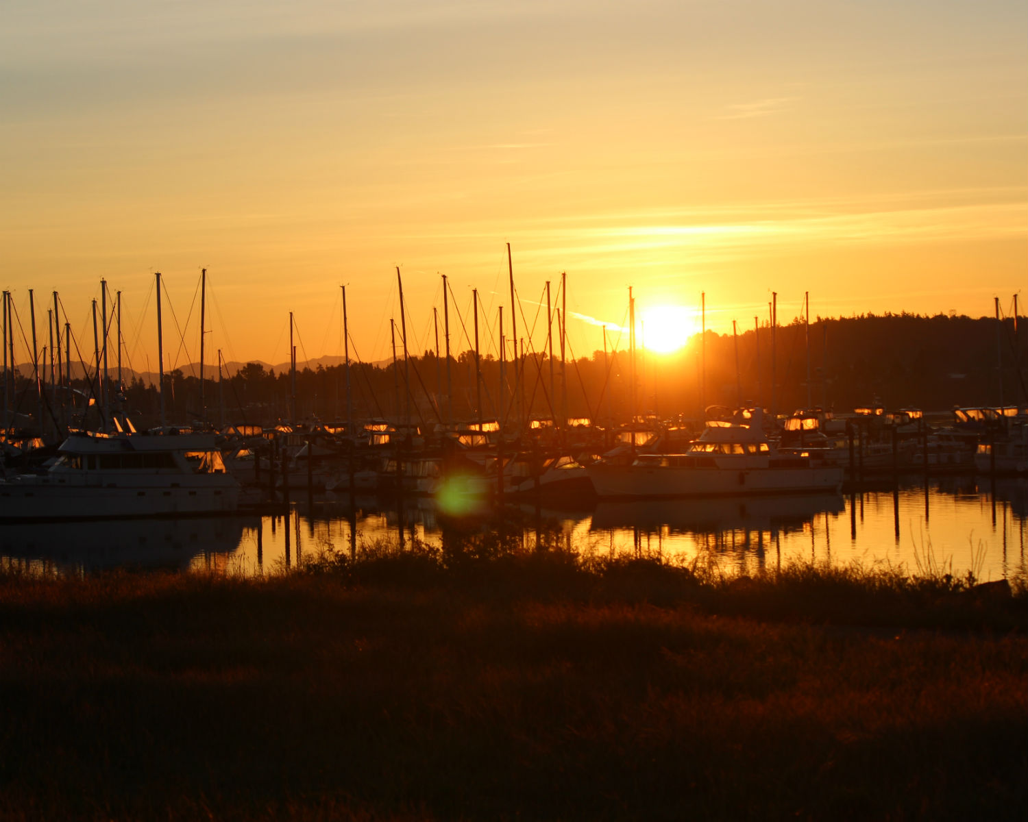 Sunset in harbor with sailboats