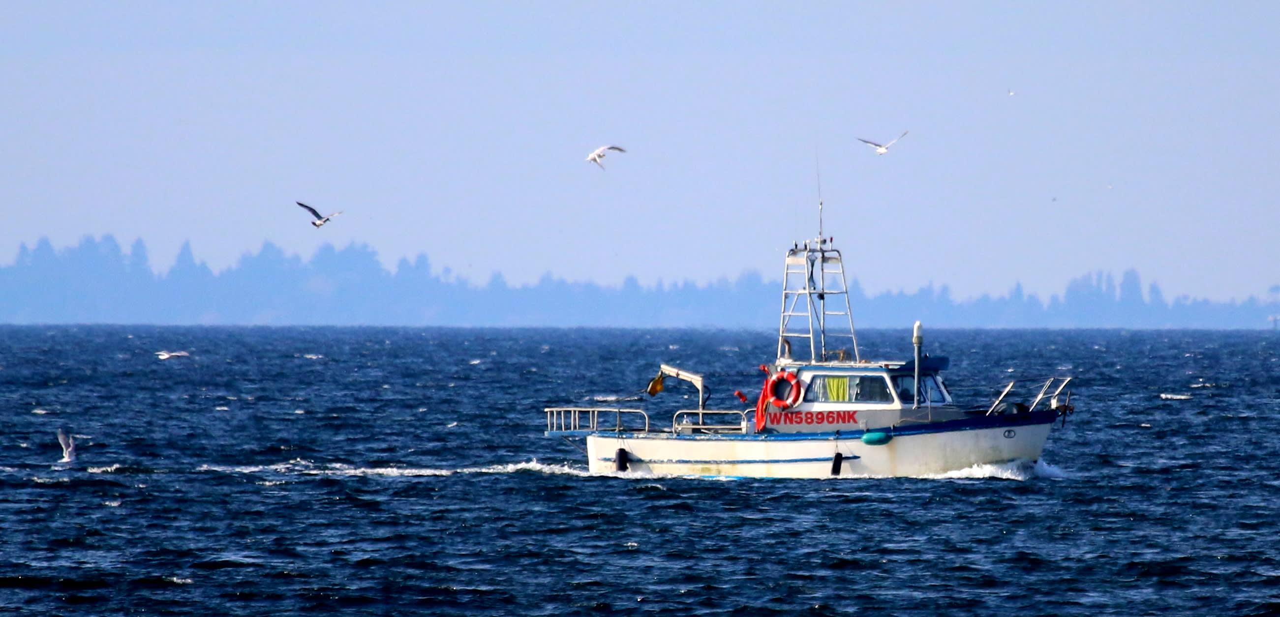 Boat-Blue-w2602.jpg