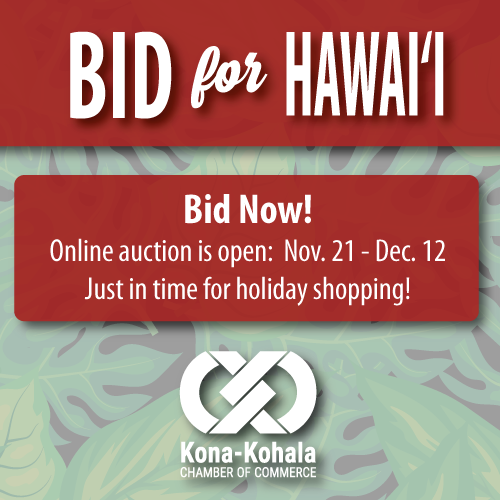 Bid-for-Hawaii-Auction-Open-Square-2018.png