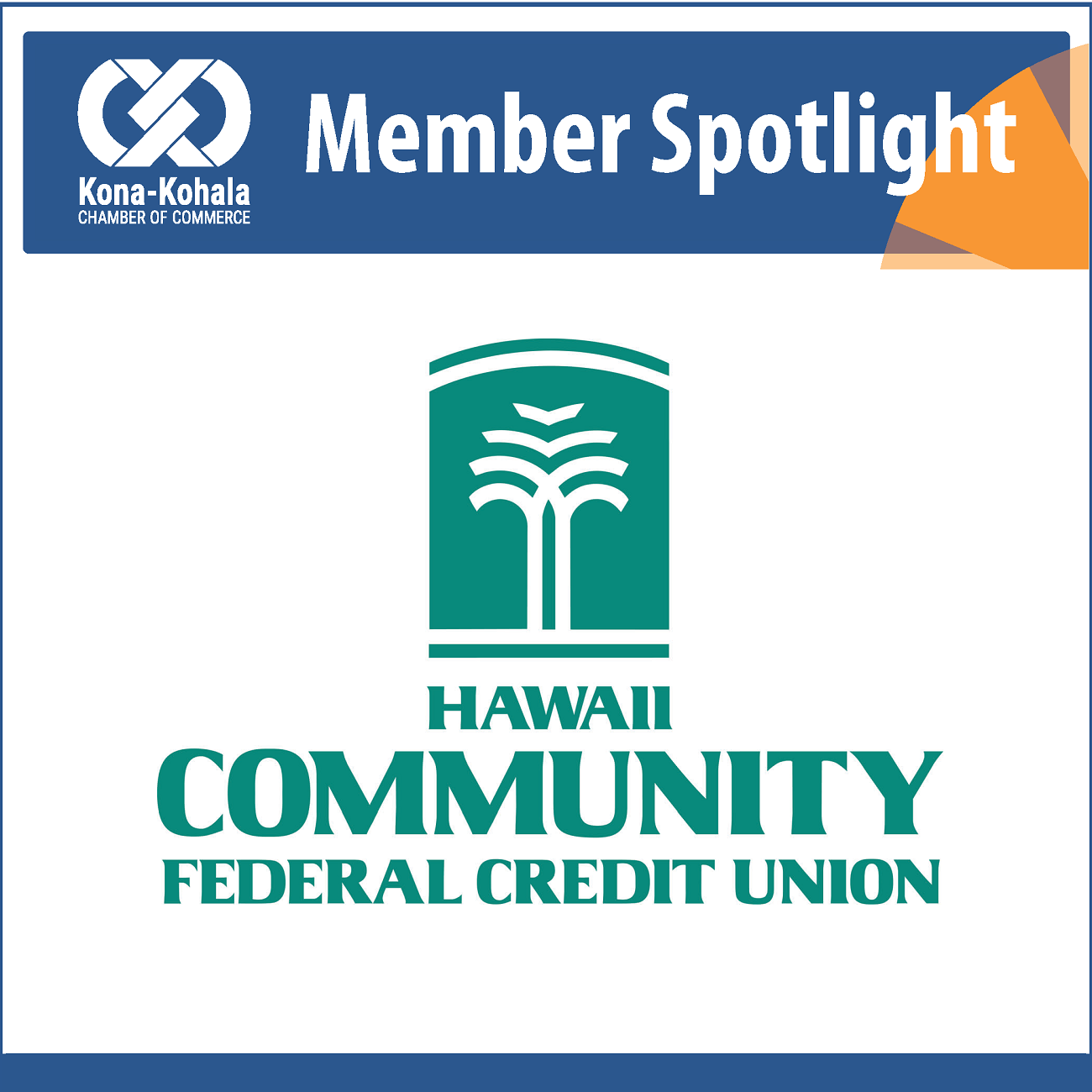 Hawaii Community Federal Credit Union Welcomes New Board Member