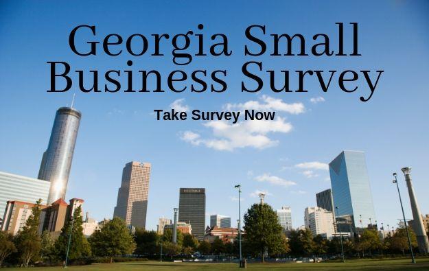 GA-Small-Biz-Survey.jpg