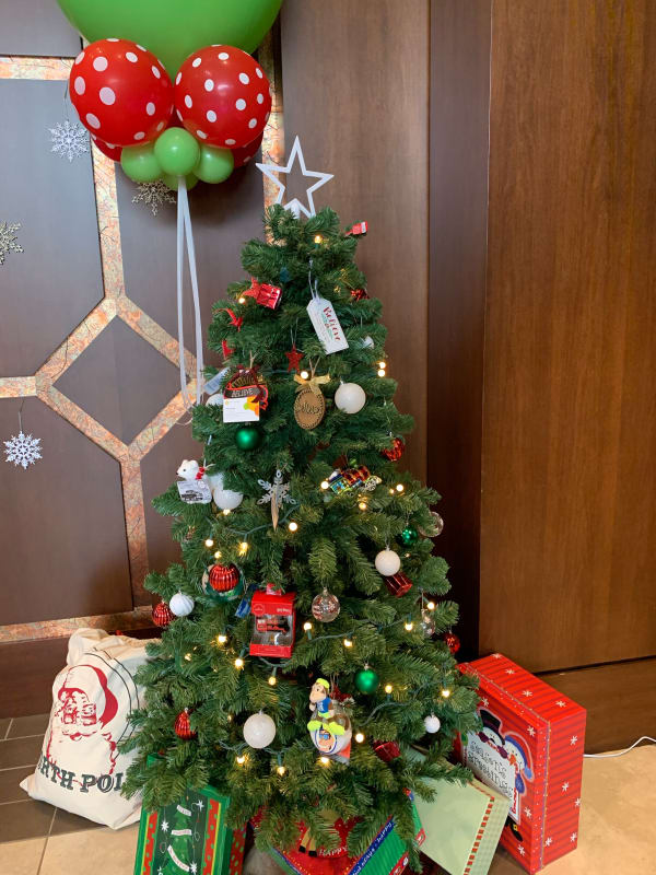 expo-giveaway-tree-w600.jpg