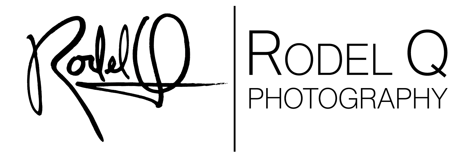 Wings-Logo_1-25x3-01-w451.jpg