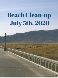 July 5th Beach Clean up wiith Solve
