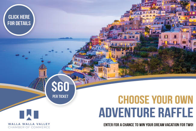 Travel-Raffle---Flyer--for-HOMEPAGE-ONLY-w650.jpg