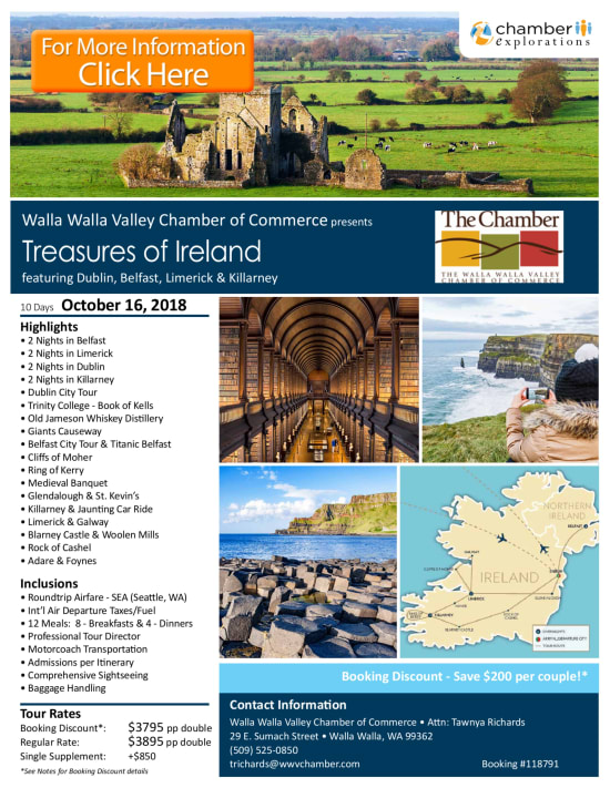 Treasures-of-Ireland---pg-1-w650.png