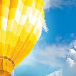 Yellow Balloon_facebook profile.jpg
