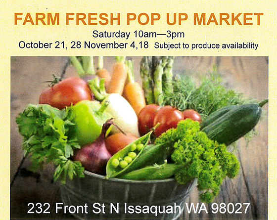 Farm Fresh Pop Up Market