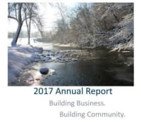 2017 IVAC Annual Report