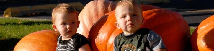 kids-and-pumpkins.JPG