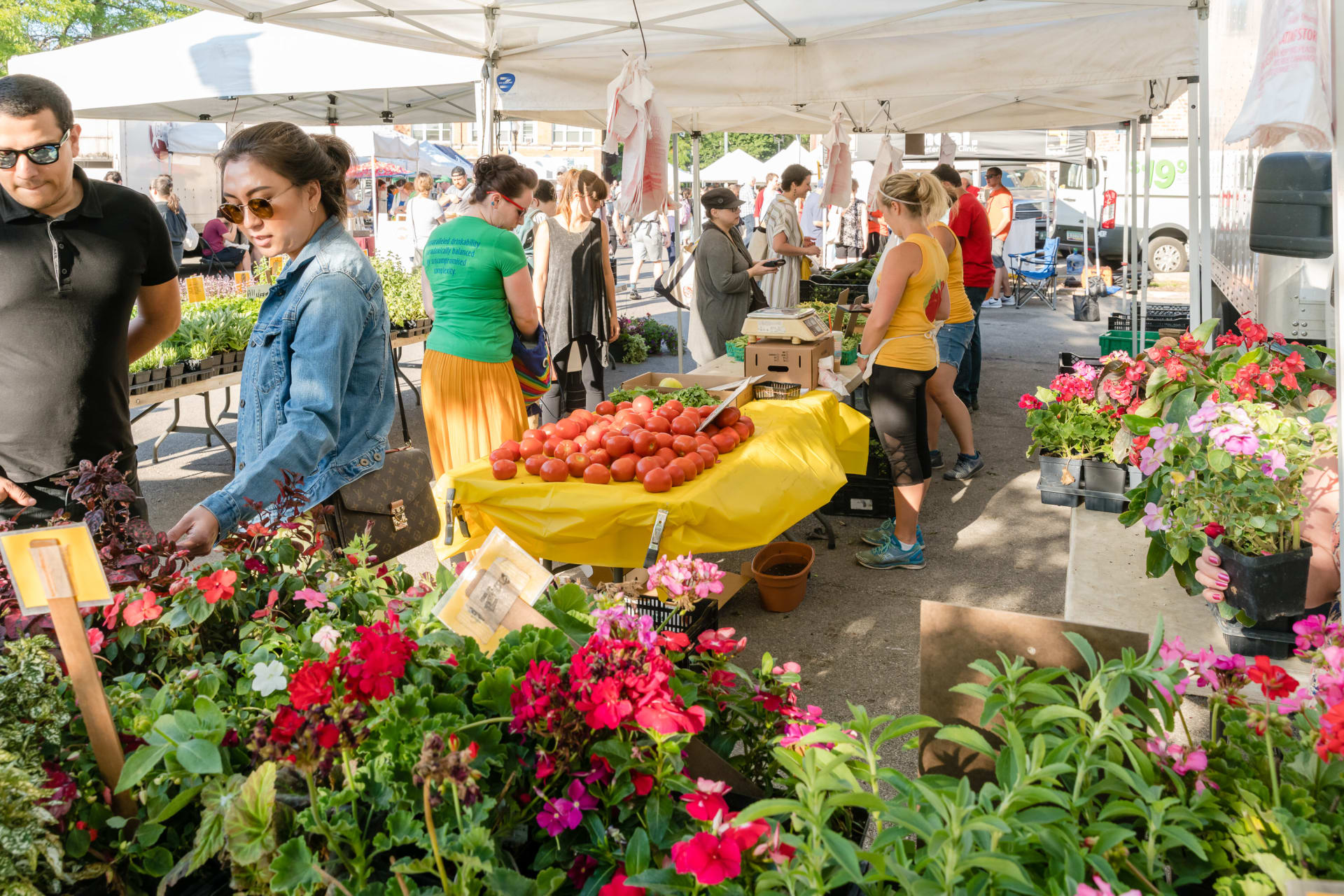 Lincoln Square Farmers Market Flowers and Produce