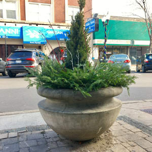 Lincoln_HolidayPlanter-300x300.jpg