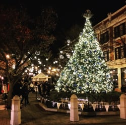 Giddings Plaza Christmas Tree