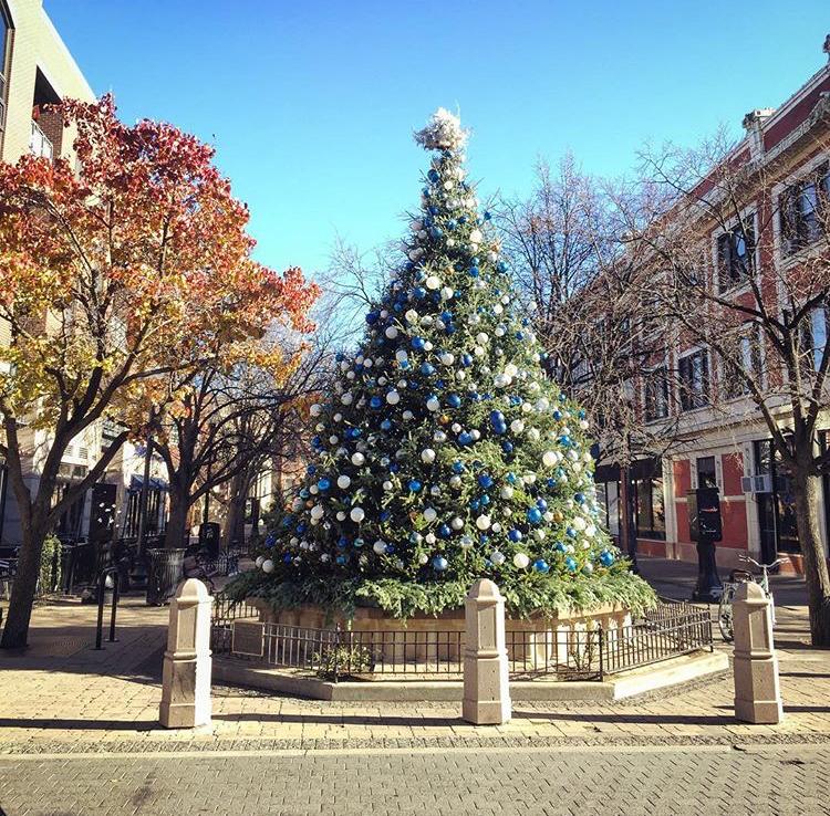 Giddings Plaza Lincoln Square Christmas Tree