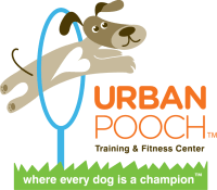 Urban Pooch Training & Fitness Center