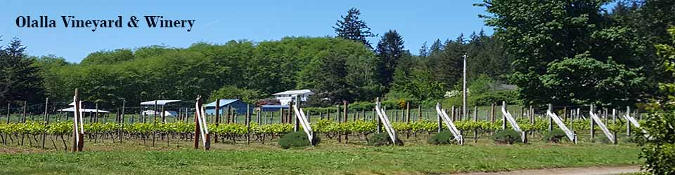 olalla-winery-header.jpg