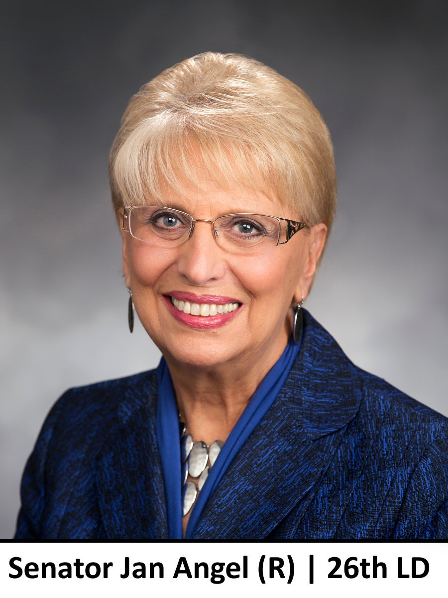 Senator Jan Angel, 26th LD, Republican