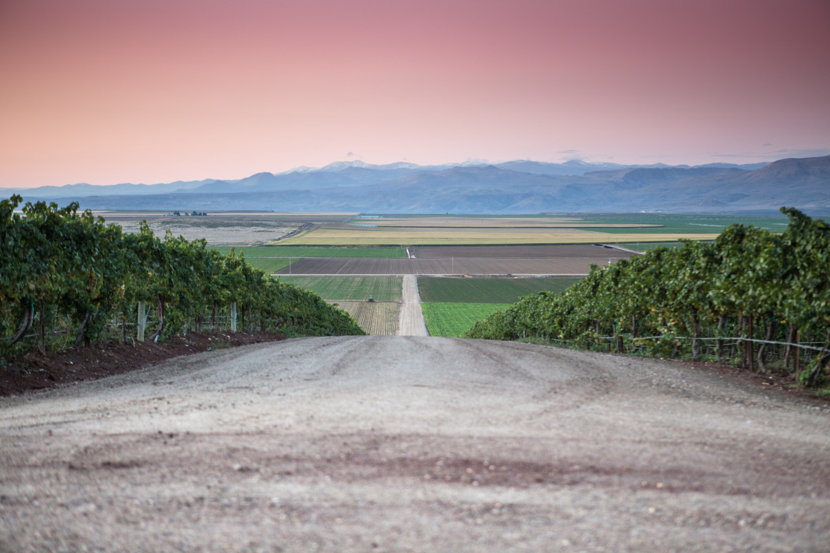 Enter Idaho's Wine Region