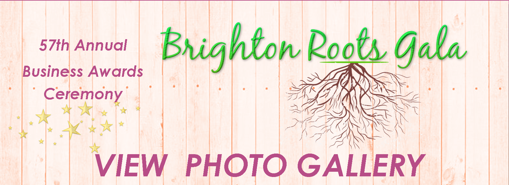 Brighton-Roots-Business-Awards-2018-photo-gallery(1).png