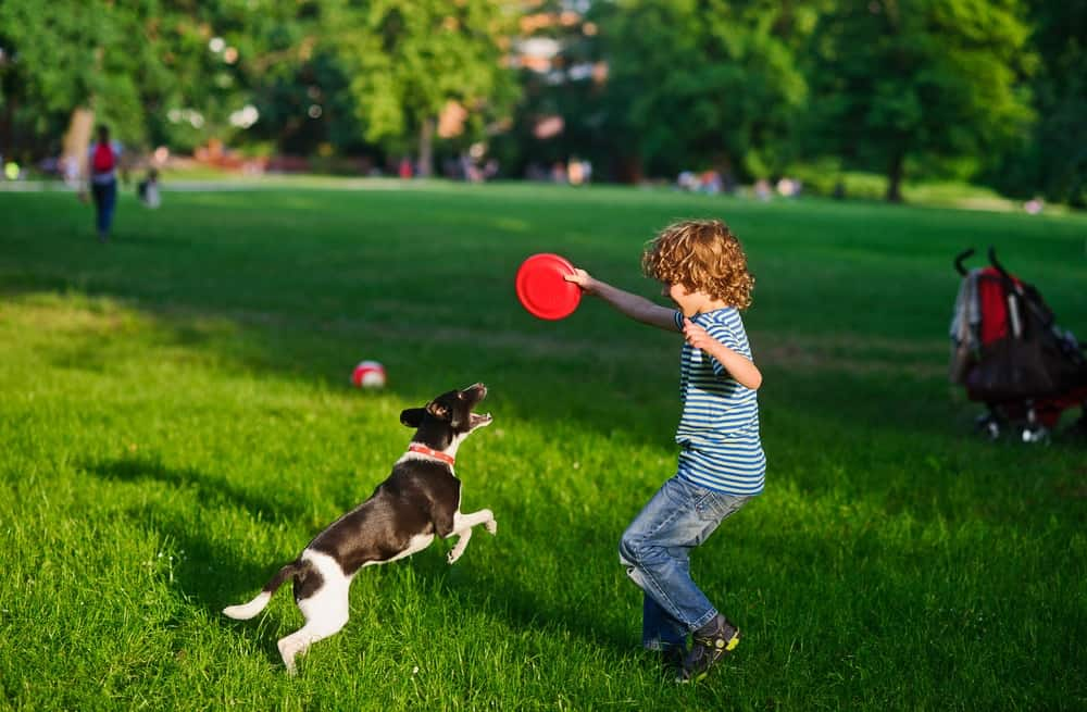 dogpark_children-2.jpg