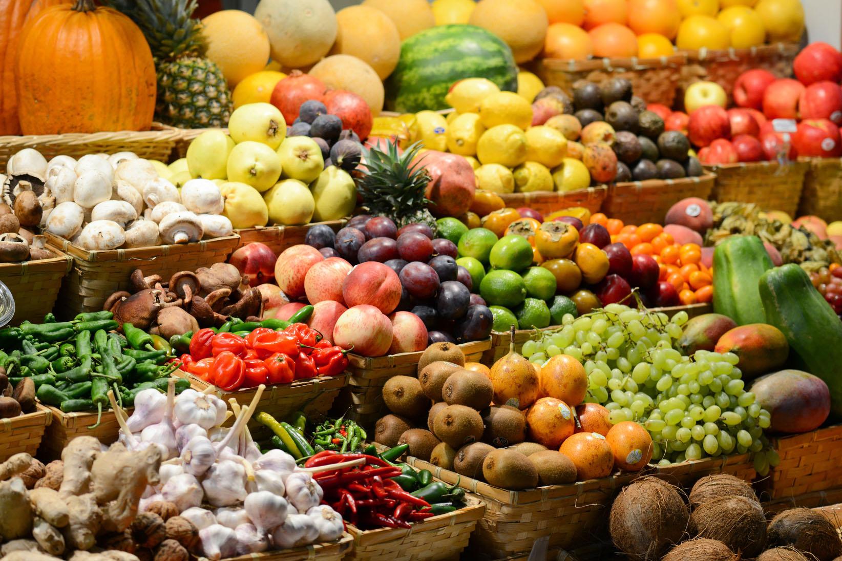 farm-photo-1.jpg