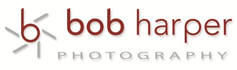 LOgo-Bob-Harper-w484.png