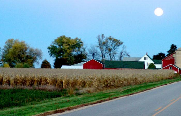 4-Farm.jpg