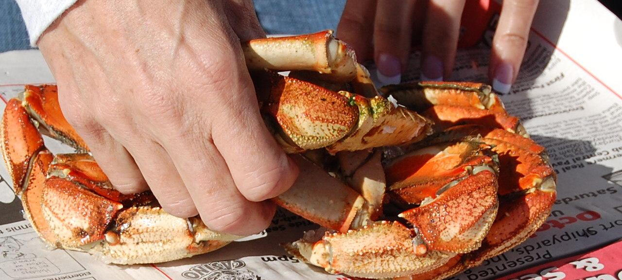 92_Crab1.jpg