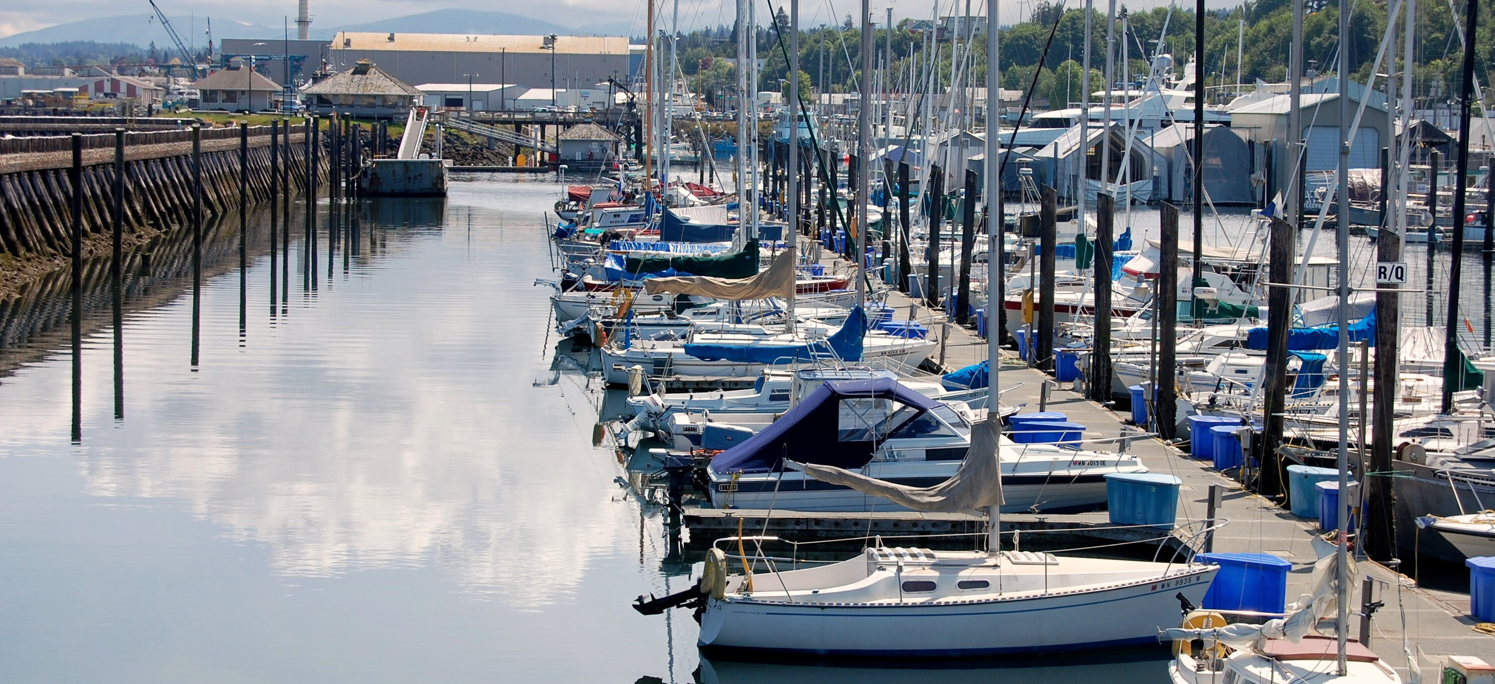 99_Sailboats_in_Marina1.jpg
