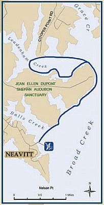 Neavitt Landing Kayaking Map.jpg
