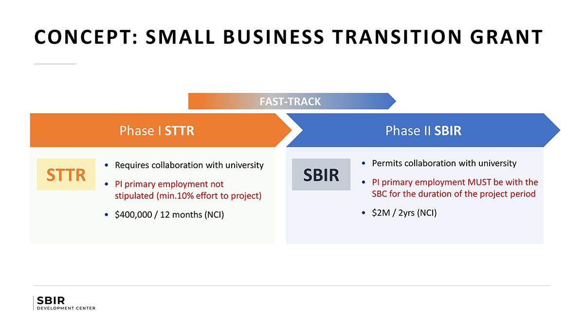 NCI SBIR Small Business Transition Grant