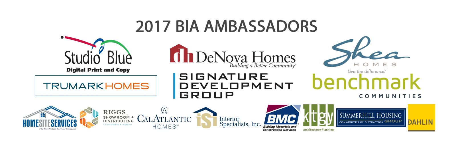 2017-Ambassador-Banner-Website-Title.jpg