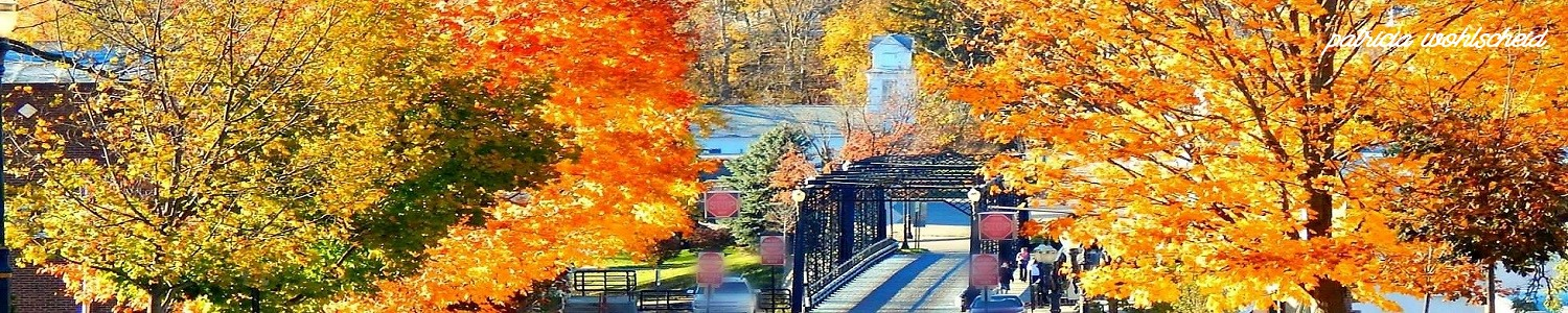 Portland MI Michigan Downtown.fall.veteran.memorial.bridge