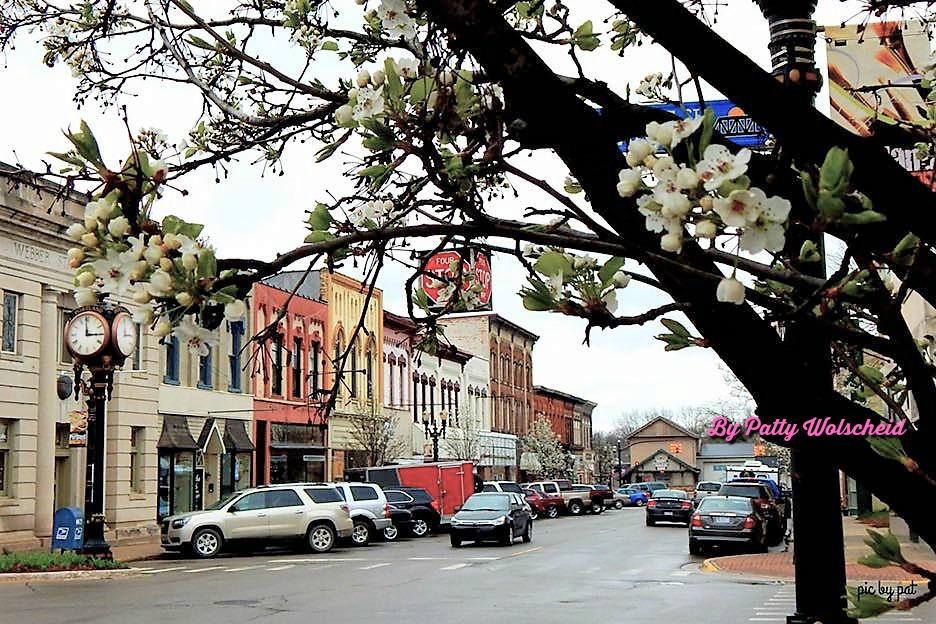 Portland MI Spring Downtown