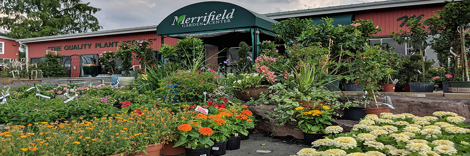 merrifiedl-garden-center-june-10.jpg